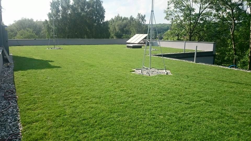 Zieliny dach w systemie Diadem - Katowice Ligota