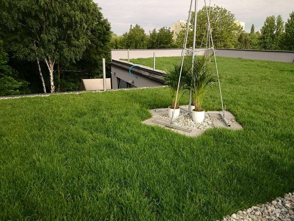 Zielony dach w systemie Diadem Katowice Ligota